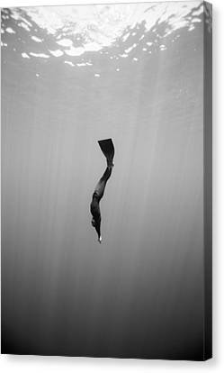 Apnea Canvas Print - To The Depths by One ocean One breath