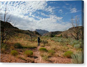 Canvas Print featuring the photograph To The Desert by Jon Emery