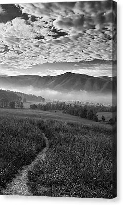 To The Mountains Canvas Print by Andrew Soundarajan