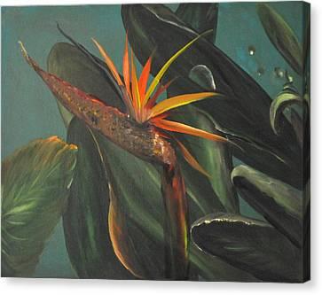 To The Tropics Canvas Print