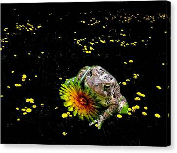 Toad In A Lions Den Canvas Print