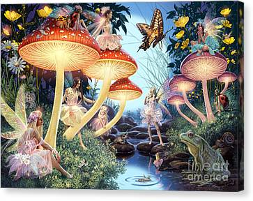 Toadstool Brook Canvas Print by Steve Read