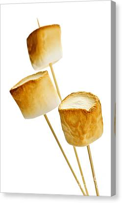 Toasted Marshmallows Canvas Print by Elena Elisseeva