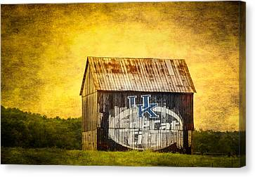 Tobacco Barn In Kentucky Canvas Print by Paul Freidlund