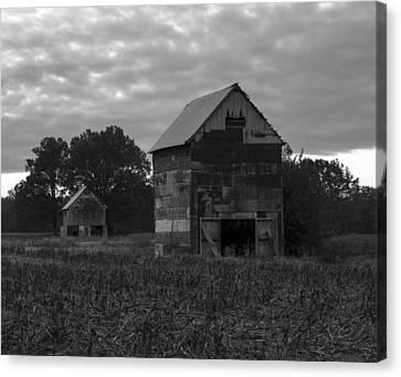 Murray Kentucky Canvas Print - Tobacco Barns by Amber Kresge
