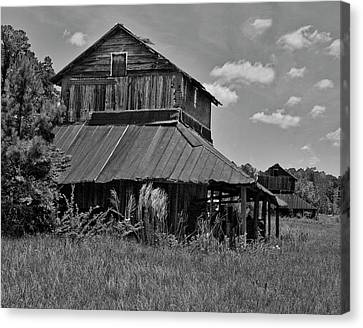 Tobacco Barns With Clouds Canvas Print by Sandra Anderson