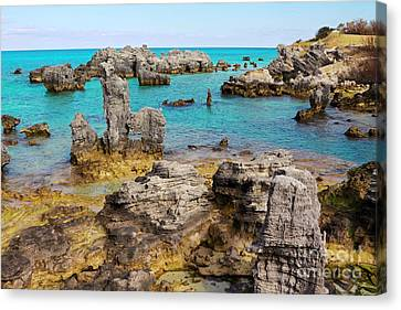 Tobacco Beach In Bermuda Canvas Print