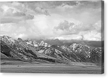 Tobacco Root Mountains Montana Black And White Canvas Print by Jennie Marie Schell