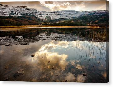 Tobacco Sky Canvas Print by Tony Skerl