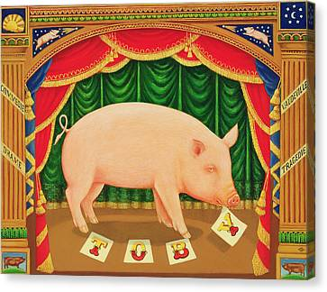 Toby The Learned Pig Canvas Print by Frances Broomfield