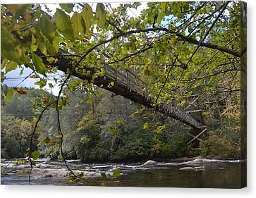 Toccoa River Swinging Bridge Canvas Print