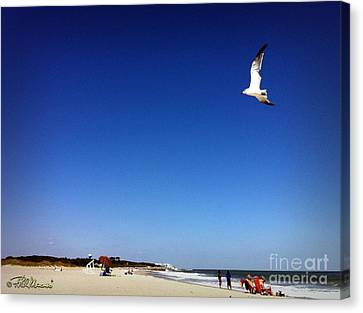 Canvas Print featuring the photograph Today I Will Soar Like A Bird by Phil Mancuso