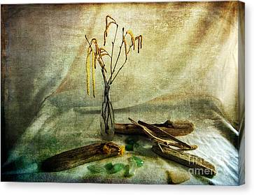 Today's Find Canvas Print by Randi Grace Nilsberg