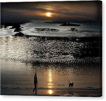 Tofinoscape Dusk Canvas Print by Lyn  Perry