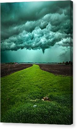 Together We Can Make It Canvas Print by Phil Koch
