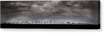 Together We Shall Stand Canvas Print
