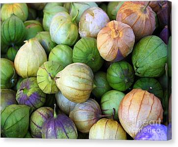 Grocery Store Canvas Print - Tomatillos by Carol Groenen