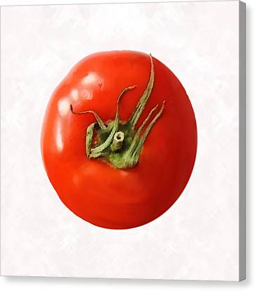 Tomato Canvas Print by David Blank