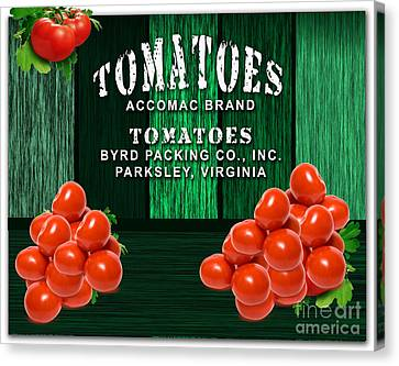 Tomato Canvas Print - Tomato Farm by Marvin Blaine