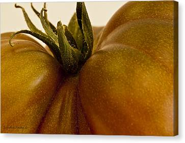 Cooks Illustrated Canvas Print - Tomato Macro by Sandra Foster