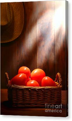 Tomatoes At An Old Farm Stand Canvas Print by Olivier Le Queinec