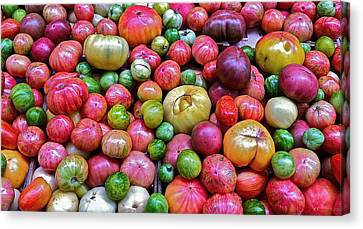 Tomatoes Canvas Print by Bill Owen