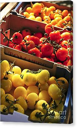 Local Canvas Print - Tomatoes On The Market by Elena Elisseeva