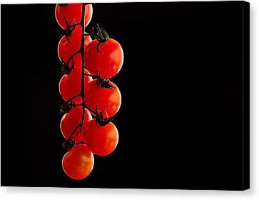 Tomatos Canvas Print by Marwan Khoury