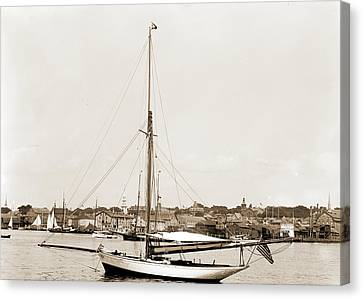 Tomboy Canvas Print - Tomboy, Tomboy Yacht, Harbors, Yachts by Litz Collection