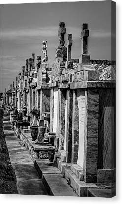 Tombs In A Row Canvas Print by Andy Crawford