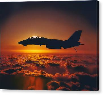 Tomcat Sunrise Canvas Print by Peter Chilelli