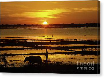 Tonle Sap Sunrise 01 Canvas Print by Rick Piper Photography