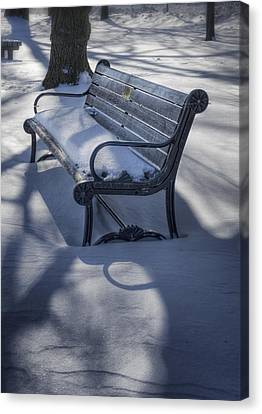 Too Cold To Contemplate Canvas Print by Joan Carroll