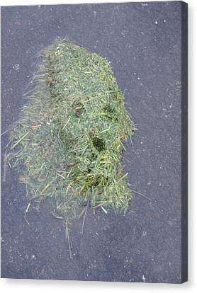 Canvas Print featuring the photograph Too Much Grass Man by Marie Neder