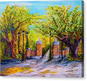 Toomers Oaks Canvas Print - Toomer's Corner Oaks by Eloise Schneider