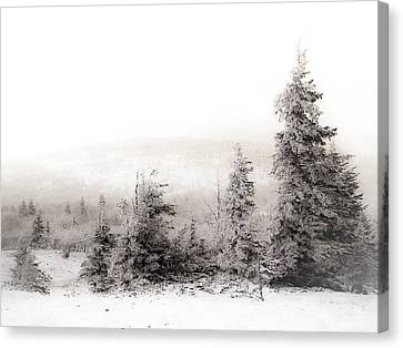 Snowy Scene Canvas Print - Top Of Canaan In Winter by Shane Holsclaw