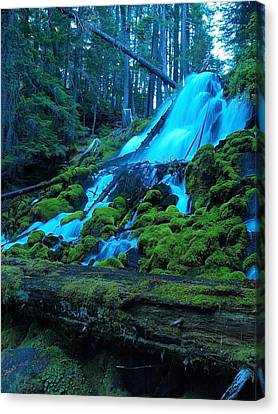 Top Part Of Clearwater Falls Canvas Print by Teri Schuster