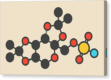 Topiramate Epilepsy Drug Molecule Canvas Print by Molekuul