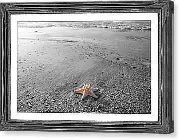 Topsail Island The Lone Star Canvas Print