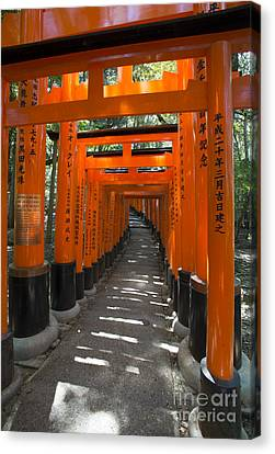 Torii Canvas Print - Torii Gates Of Inari Shrine by David Bearden