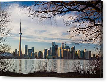 Toronto Through The Trees Canvas Print by Inge Johnsson