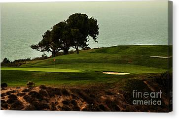 Torrey Pines Golfcourse Canvas Print by Darleen Stry