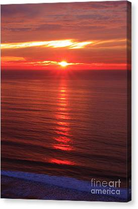 Torrey Pines Starburst Canvas Print