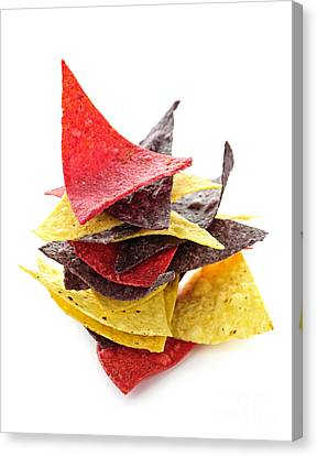 Tortilla Chips Canvas Print by Elena Elisseeva