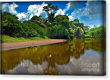 Tortuguero River Canals Canvas Print by Gary Keesler