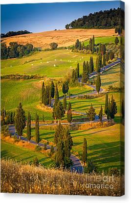 Toscana Strada Canvas Print by Inge Johnsson