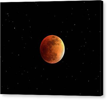 Totality Canvas Print - Total Lunar Eclipse by Damian Peach
