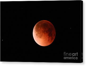 Total Lunar Eclipse Canvas Print by Stephen & Donna O'Meara