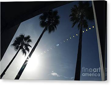 Total Solar Eclipse Sequence Canvas Print by Detlev Van Ravenswaay