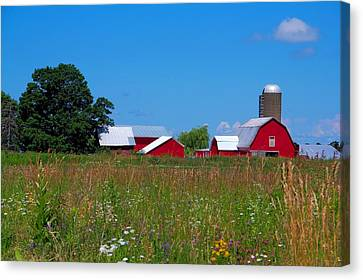 Canvas Print featuring the photograph Touch Of Color by Dave Files